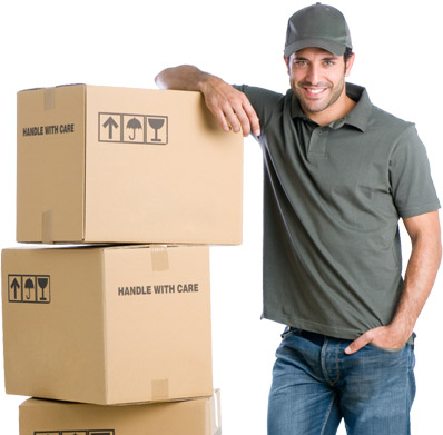 Leading South Coast Removalists